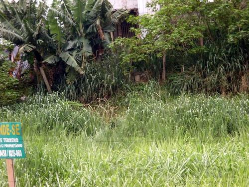 Terreno Para Aluguel, 1200.0m² - 27474
