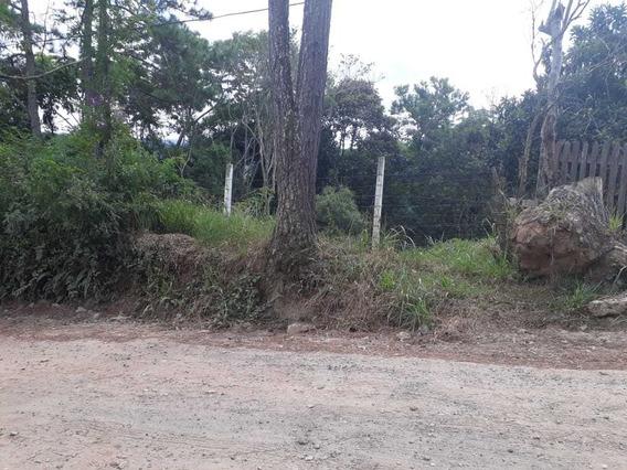 Terreno Em São Lourenço Da Serra