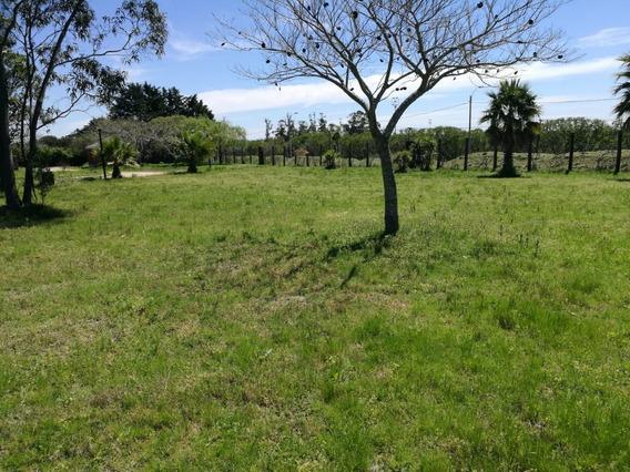 Terreno Barato Financiable En Barrio Privado Canelones - A1
