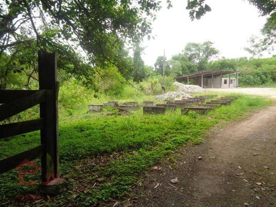 Terreno Para Alugar, 3000 M² Por R$ 3.500/mês - Jardim Do Rio Cotia - Cotia/sp - Te0178