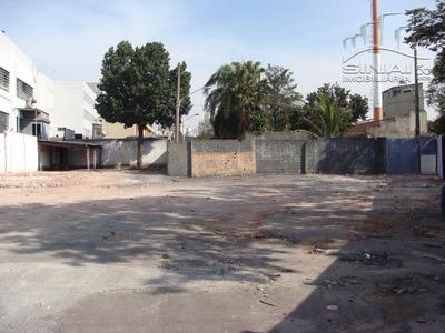 Terreno Ideal Para Estacionamento - L-86252