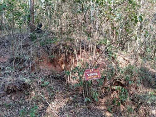 Imagem 1 de 7 de Terreno Bosque Dos Eucaliptos Atibaia - 596m² - Te0050-1