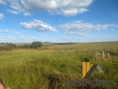 Rural Fazenda - Fa29-v