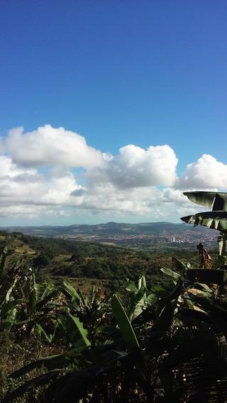 Vendo Sítio Em Vitória De Santo Antão/pernambuco