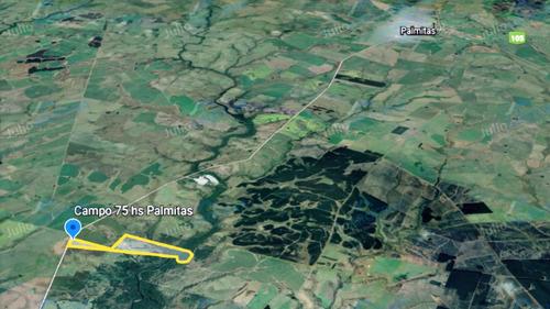 Excelente Campo De 75 Ha En Palmitas - Soriano