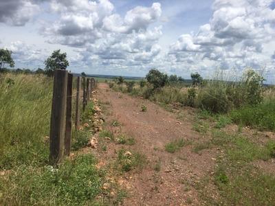 Fazenda A Venda Em Balsas - Ma (agricultura) - 800