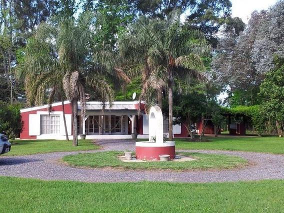 Campo - Los Cardales