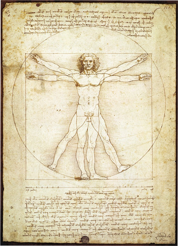 Imagen 1 de 1 de Hombre Vitruvio Da Vinci Mini Rompecabezas 1000 Piezas Tomax