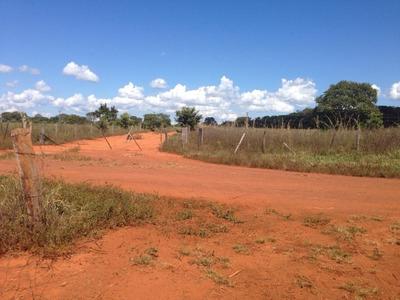 Fazenda Em Palmas - To, Dupla Aptidão - 362