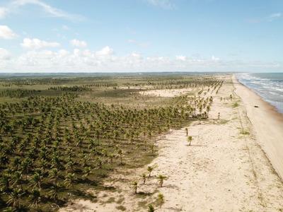 Terreno Na Barra Dos Coqueiros, A Beira Mar - Cp5862