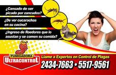 Servicio Profesional De Fumigacion Y Control De Plagas.