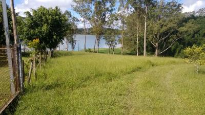 Terreno - Venda - São Bernardo Do Campo - Sp - Taquacetuba - T0298