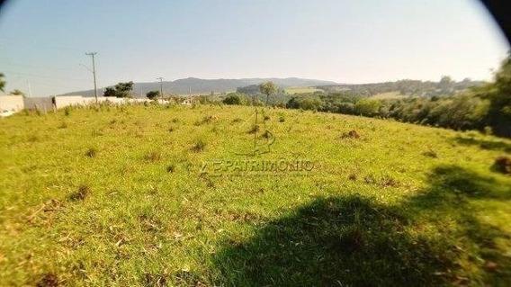 Terreno - Tijuco Preto - Ref: 60559 - V-60559
