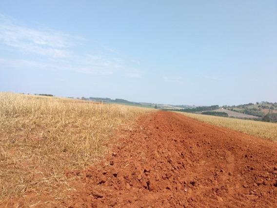 Fazenda A Venda Em Itapeva -sp - Fa00026 - 32132024