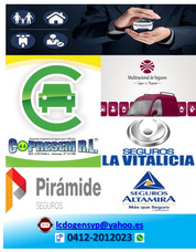 Asesor Productor De Seguros. Auto (rcv) Salud, Desde: