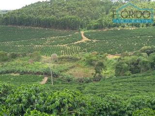 Fazendas À Venda Em Espera Feliz/mg - Compre O Seu Fazendas Aqui! - 1400410