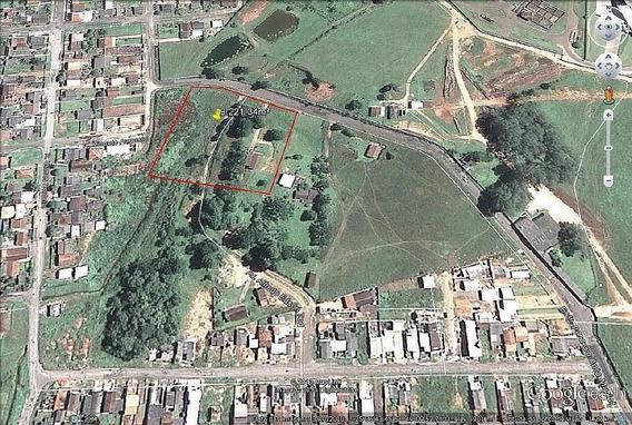 Terreno À Venda, 9221 M² Por R$ 1.200.000,00 - São Marcos - São José Dos Pinhais/pr - Te0023