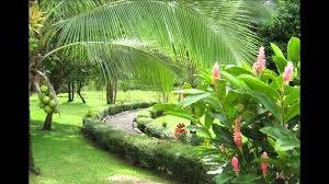 Ma Asesorías Vende Lote Residencial Palma Dorada, Guápiles