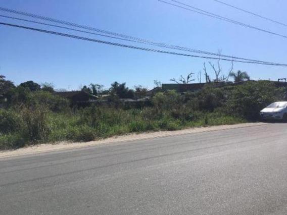 Terreno Comercial No Indaiá Em Itanhaém,confira! 5686 J.a