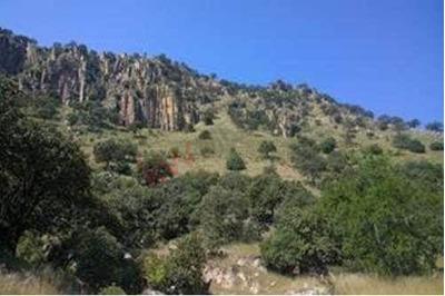 Terreno En Ixcatán - Las Palomas De La Soledad