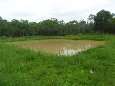 Sitio C/ Área Plana/lago /sede/churrasqueira/ref: 03155