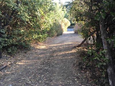 Camino El Refugio / El Arrayan C_270951