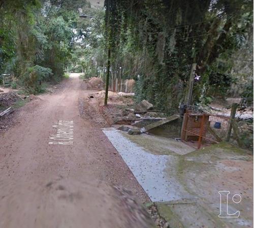 Terreno Em Ponta Grossa - Lu271728