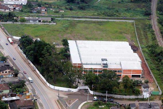 Excelente Galpão Ribeirão Pires - Gl00004 - 34984959