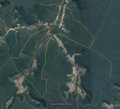 Vendo Fazendas/reservas Florestais,leia Descrição Do Anuncio
