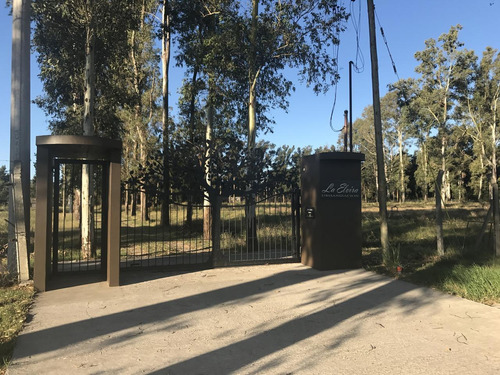Imagen 1 de 19 de Terreno - La Plata