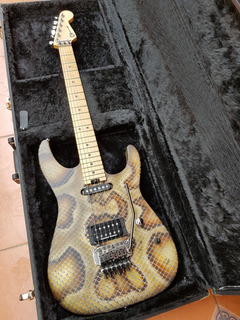 Charvel Warren Demartini Snakeskin Jackson Fender Ibanez Ltd