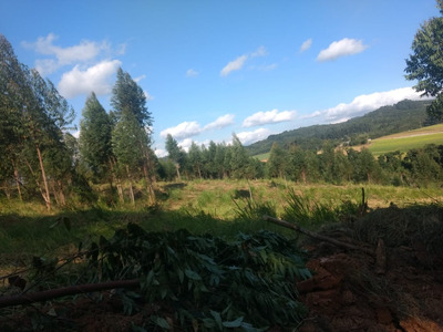 06- Vendo Terreno Por Apenas 20.000