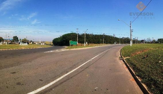 Terreno Residencial À Venda, Jardim Das Palmeiras, Ipeúna. - Te0135