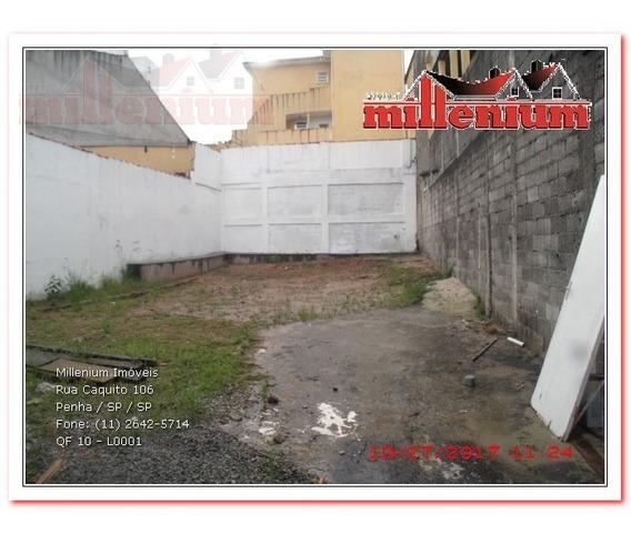 Terreno Para Aluguel, 223.307 M2, Parque Boturussu - São Paulo - 10