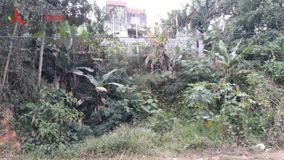 Terreno À Venda, 219 M² Por R$ 120.000,00 - Jardim Nova Esperança - Francisco Morato/sp - Te0235