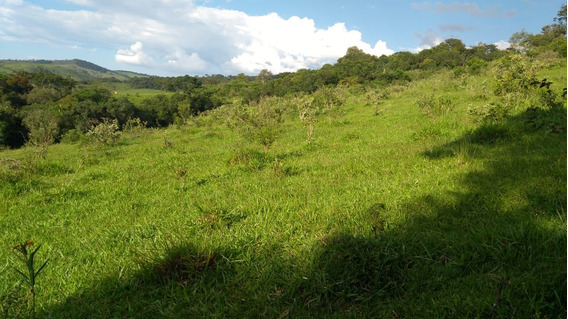 Fazenda Próx Fortaleza De Minas