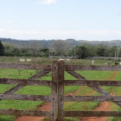 Fazenda Para Venda Em Bonito, Fazenda Em Bonito - 693