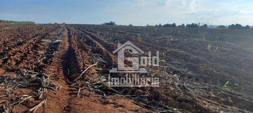 Imagem 1 de 8 de Fazenda À Venda, 210 Alqueires Por R$ 31.000.000 - Zona Rural - Tatuí/sp - Fa0246