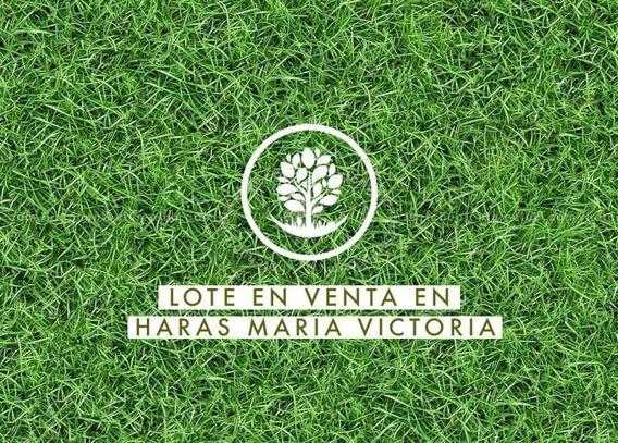 Terreno En Venta En Haras María Victoria