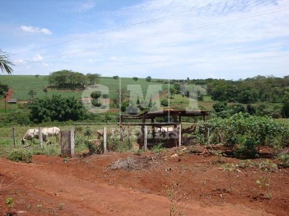 Sítio, Área Rural, Batatais - Si1001-v