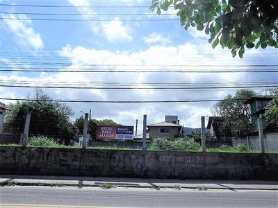 Ótimo Terreno No Campeche - 72135