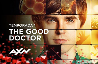 Serie The Good Doctor Español Latino