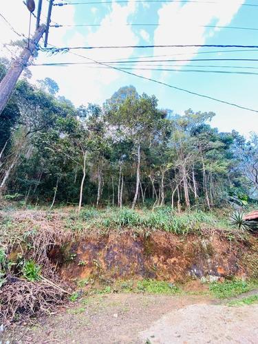 Imagem 1 de 14 de Lote Com 2.736m2 Em Campo Do Coelho  -  Nova Friburgo - 396