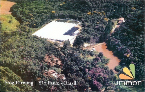 Sitio160.000m2,estrutura Criação Peixes(de Graça) 30km Praia