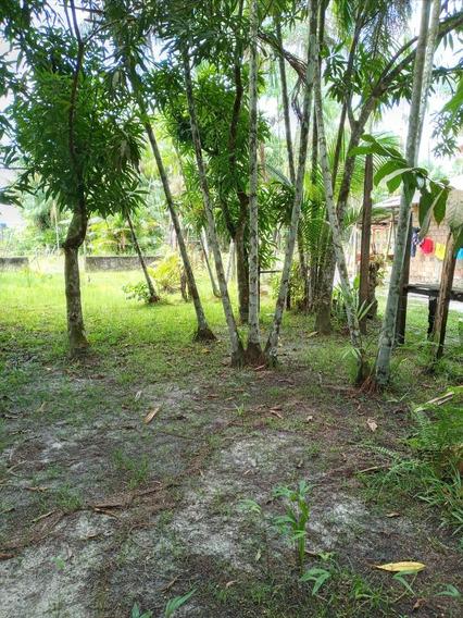 Terreno Na Ilha De Mosqueiro
