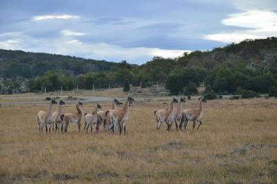 Terreno Country San Justo