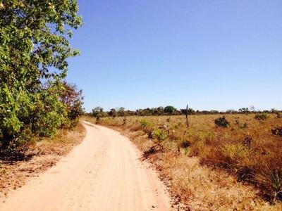 Fazenda A Venda Em Ponte Alta - To (agricultura E Pecuária) - 452