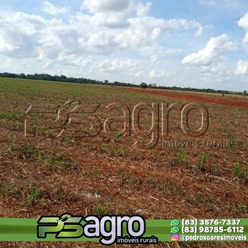 Fazenda À Venda, 29040000 M² Por R$ 200.000.000,00 - Centro - Rio Verde/go - Fa0266