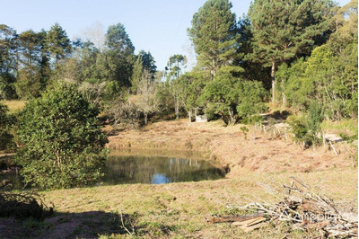 Chácara Residencial À Venda, Quatro Barras, Quatro Barras. - Ch0047