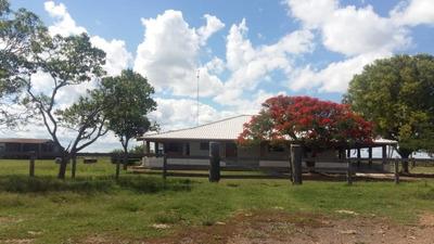 Fazenda A Venda Em Porto Murtinho - Ms (pecuária) - 906